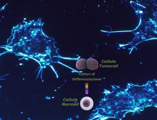 Riprogrammare le cellule tumorali